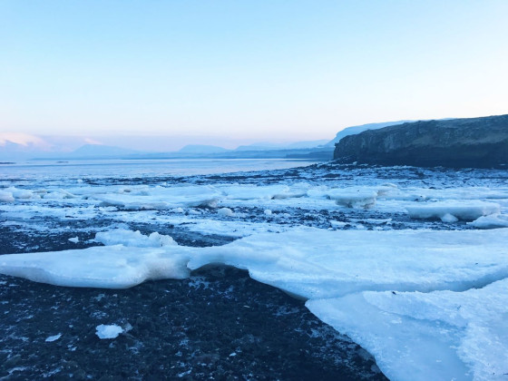 """Gletscherlagune"" in Reykjavík"