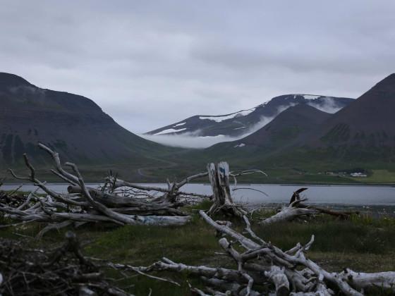 Abends in Þingeyri