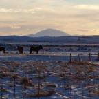 Der erste Morgen in Island (Lambastadir)